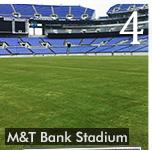 Ravens Switch to Natural Grass at M&t Bank Stadium